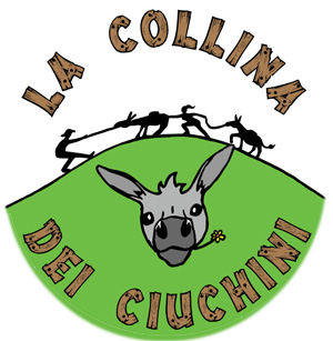 logo-ciuchini