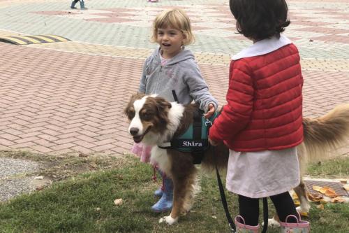 cura-animali-bambini