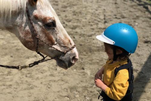 pedagogia-bambini-animali